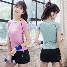 2 Pic Running Sports Suit Women Short Sleeve T-shirt Shorts Yoga Set Sportswear Tracksuit Women Sports Outfit Fitness Athletic