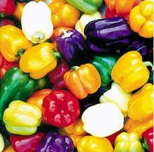 180pcs 6 Color Yellow Puple Red Green Blue White Mix Sweet Bell Hot Pepper Seeds vegetables Paprika(China)