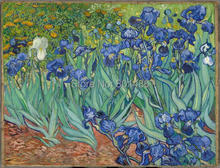 Irises, Saint-Remy, c. 1889 by Vicent Van Gogh print painting on canvas for living room wall art decoration,HQ Giclee prints