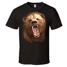 OKOUFEN 2017 Hot Sale Super Fashion Grizzly Bear Shirt Graphic T-shirt Mens Short Sleeve Tee(China)