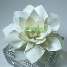 1000 pcs /lot Sola Flowers Natural White Fragrance Flower Diffusers With Rope For Fragrance Diffuser Wholesale Price(China)
