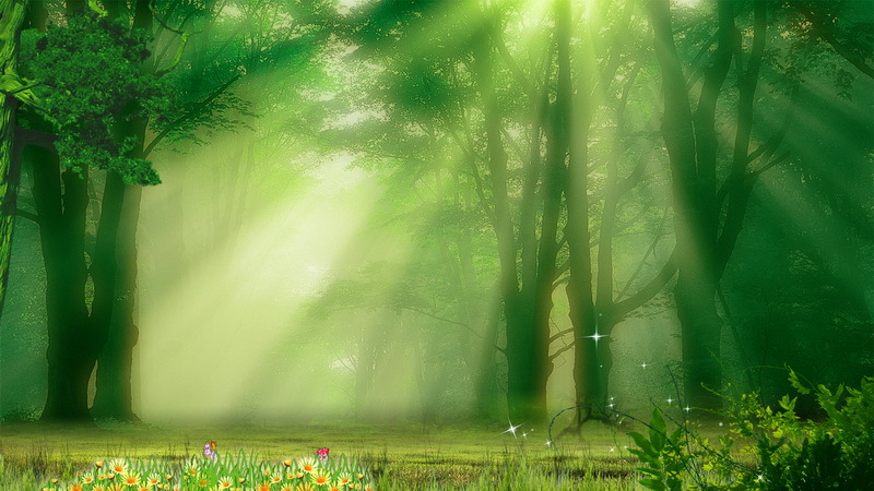 Forest backdrop High-grade Vinyl cloth Computer printed custom Backgrounds for sale<br><br>Aliexpress