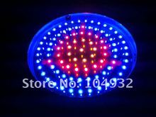 New lx-Brand 90W led grow light blue and red and orange 6:2:1 led grow light