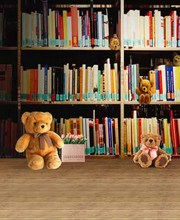 5x10FT Bookcases Study Books Shelf Bow Bears Toys Wooden Floor Kids Children Photography Studio Backdrops Background Vinyl 10x20