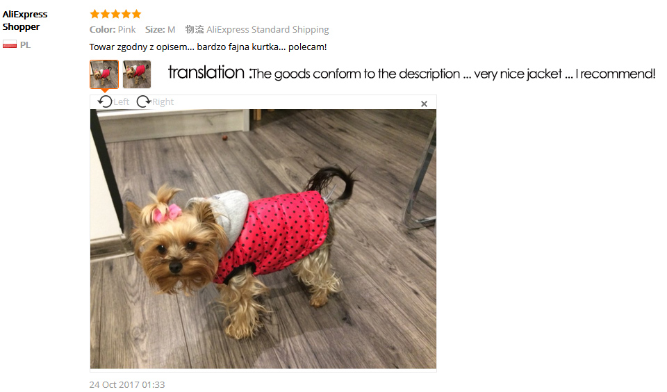 winter dog clothes 4