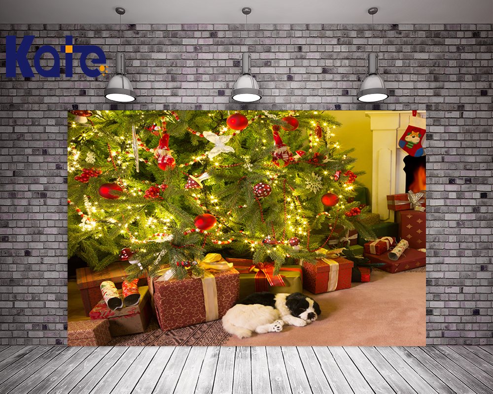 Kate Background Indoor Backdrop Green Christmas Tree For Children Christmas Background Gift Box Dog Photography Backdrops<br>