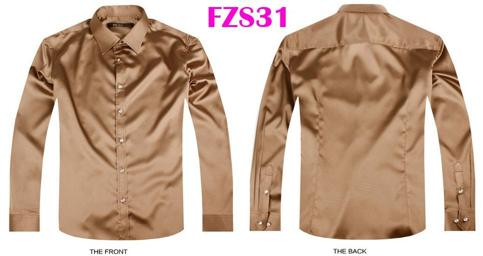 FZS31