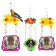 Pet Bird Parrots Food Feeder Water Food Feeding Tray , Chain Hanging Swing Toys