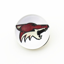 50pcs/lot NHL Arizona Coyotes Snap Buttons Fit 18mm Baseball Team Sports Snap Button Jewelry Ginger Bracelets&Bangles(China)