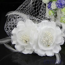 Women Head Wear Bridal Birdcage Veil Fascinator White Feather Flower With Comb