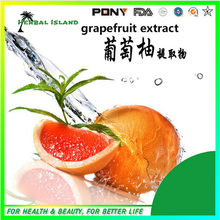 Natural organic Product Grapefruit Extract from Manufacturer directly 100g