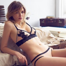 2017Europe Brand Deep V Perspectivity Silk Lace Bra Lingerie Set Embroidery Brassiere Wireless VS Sexy Bra BriefSet  highquality