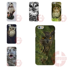 High Quality Owl On Mint Soft TPU Silicon Fashion Phone Case For Apple iPhone 4 4S 5 5C SE 6 6S 7 7S Plus 4.7 5.5