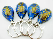 free shipping 30 pcs Cool Real Insect Gold Scorpion Blue Keychain Promotion Gift Novel Gift Christmas souvenir Sexy Gift(China)