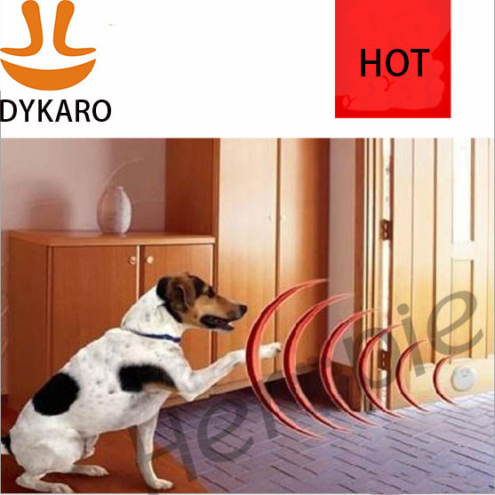 Indoor Electronic Fence For Dogs Reviews - Best Electronics 2017