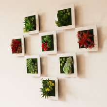 New High Simulation 3D Plants Country Style Wall Hanging Artificial Pastic Flower Picture Frames Store Wall Decoration Gift