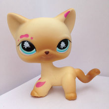 LITTLEST Animals PET Short Hair Collection Figure For Girl Cat DWA269(China)