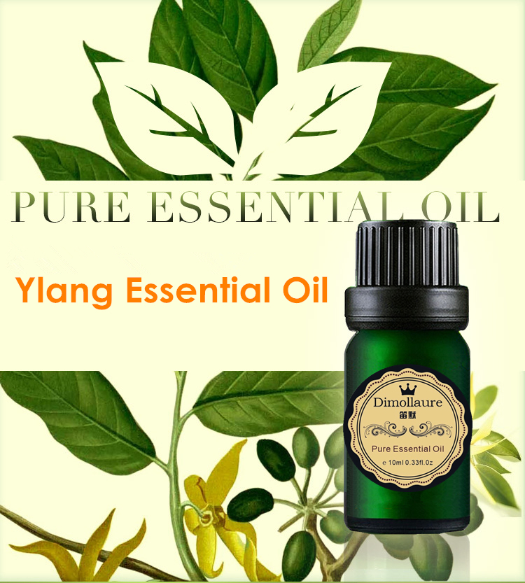 Dimollaure Ylang Essential Oil skin care SPA massage Delay aging relieve stress Aromatherapy Fragrance Lamp plant essential oil 10