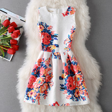 Hot Sale Women Fashion Dress A-Line O-Neck Print Dress Casual Mini Dress Plus Size Sleeveless Sexy Summer Vestidos Dress Clothes