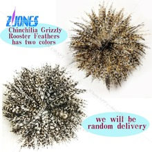 Free shipping 900pcs 10-15cm natural color grizzly stripe chicken rooster plumage feathers for jewelry making bulk sale