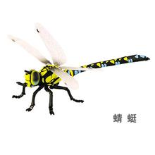 4D stereo assembling dinosaur egg toy Biological insect model  Dragonfly grasshopper Mantis  Wasp  PVC Action Figures