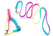Pet Rainbow Dog Harness Leash Dog Chain Nylon Dog Leads Colorful Traction Rope & Harness Wholesale Supply