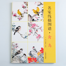 Birds famous line drawing pictures of birds Atlas Painting Book 156 Page(China)