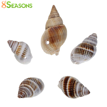 8SEASONS Shell Loose Beads Spiral Natural 28x16mm-16x9mm,50PCs (B22581)