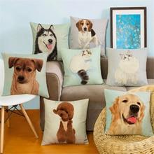 Wacandy Square Dog Animal Dachshund Car Bed Home Decor