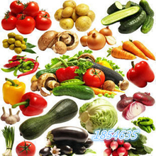 Organic Garden vegetable seeds NON-GMO Organic Tomato Pepper Pumpkin Cucumber Eggplant Carrot Corn Muskmelon Cabbage Seeds(China)
