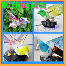 New gift Idea RC Flying birds toy bionic remote birds toy novelty toy RC airplane+free shipping(China)