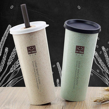 450ML Mug Coffee Cup My Water bottle with Straw Plastic BPA free Bottle Milk Tea Mug Eco-Friendly Drinkware Travel Mug for car(China)