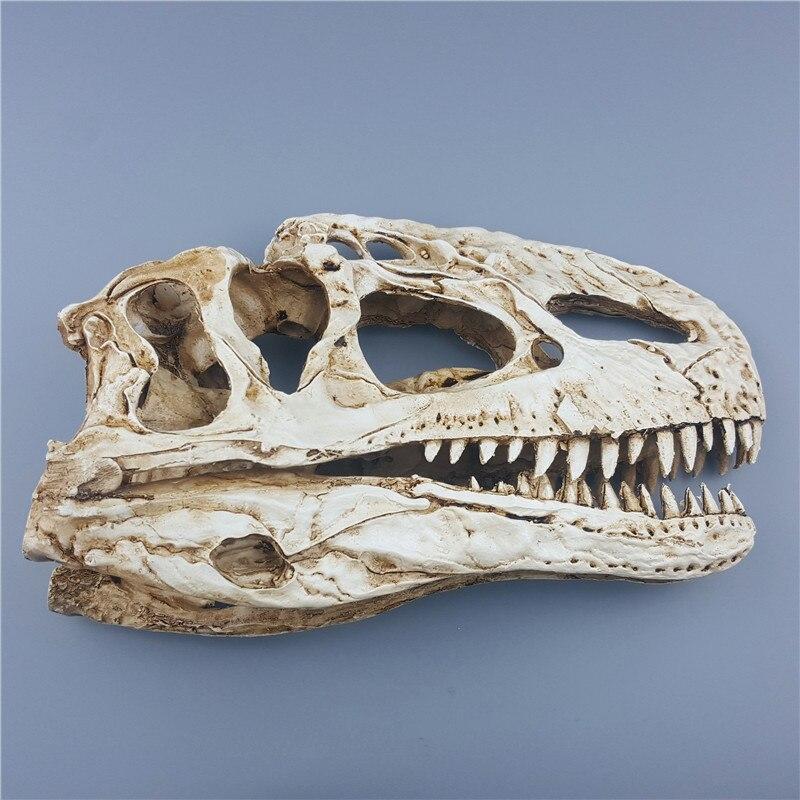 2 Stücke Mode Harz Dinosaurier Schädel Modell Dilophosaurus Und