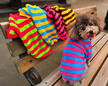 Hot Fashion Pet Rose Striped Coat New Dog Autumn Jacket Puppy Winter Clothes Cat Sweater Dog Striped Apparel