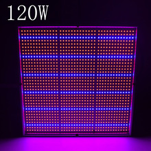 LED Grow Light Full Spectrum 50W 120W Led Grow Light Red Blue SMD2835 LED Plant Grow Lamps Light For Indoor Plants and Flower