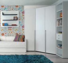 White wardrobe closet swing door(China)