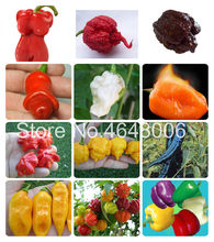 1000 Pcs/Bag Extremely Hot Chilli Pepper Bonsai Vegetable Organic Sweet Paprika Chili Bonsais Diy Plant Home Garden Easy Grow(China)