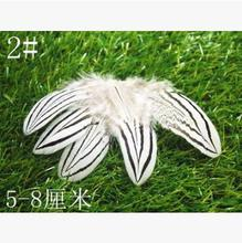 Pure white 2# natural silver chicken wing feather 5-8cm 50pcs/pack Mask jewellery/clothing/shoes/hat accessories Free shipping(China)