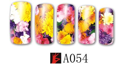 A054(1)