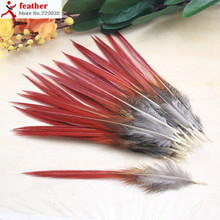50pcs/lot 10-14cm pheasant feathers red sword rare natural  bulk feather fly fishing tying Hat accessories material