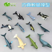 Solid model plastic ocean animal blue whale dolphin child toy gift  model