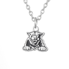 Skyrim New Arrival Georgia State Panthers NCAA Team Logo Necklace Jewelry Silver Color Chain Zinc Alloy Choker Necklace