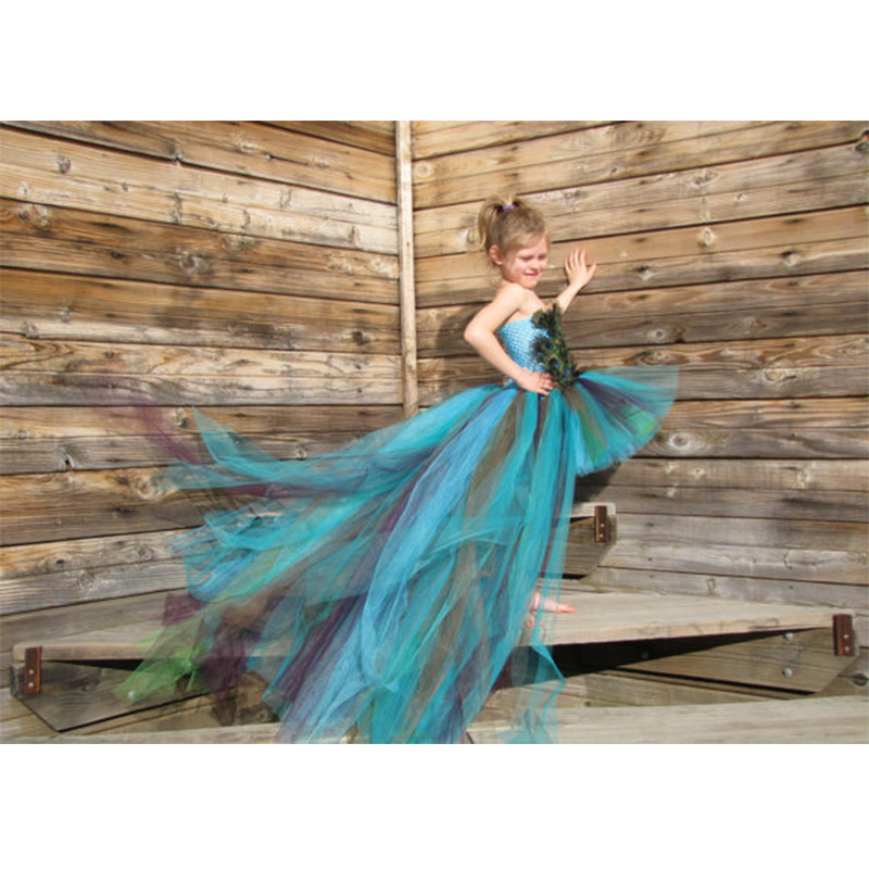 Baby Girls Train Party Dress Photo props Designs Ball Gown Handmade Peacock Fashion Girls Tulle Tutu  Dresses For Birthday <br><br>Aliexpress