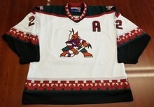 Phoenix Coyotes #22 Rick Tocchet MEN'S Hockey Jersey Embroidery Stitched Customize any number and name Jerseys(China)