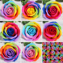 25pcs colorful soap rose flower heads roses Wedding decoration Valentines Day gift soap flower heads decorative flowers