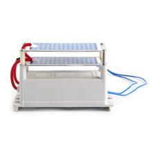 New Arrival AC 12V Ozone Generator 10g/h Double Ceramic Plate Ozonizer Air Sterilizer Used In Purifying air Wholesale