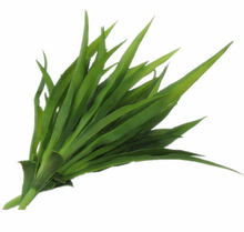 1pc Gladiolus Leaf Green grass Long Artificial Grass Plants Length Silk Leaves Home Decorations 10pcs MA1512(China)