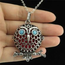 "GLOWCAT B0Q818 Vintage Silver Fragrance Copper Acrylic Eye Diffuser Owl Locket Necklace 24"" Women Jewelry Party"