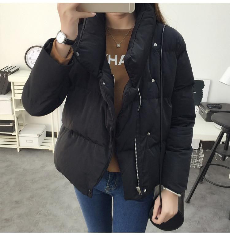 2017 Womens Winter Jacket Brand Womens Parka Coats Women Fur Hoods Korean ladies coat Down Jacket Women Wadded Jacket Warm R5Одежда и ак�е��уары<br><br><br>Aliexpress