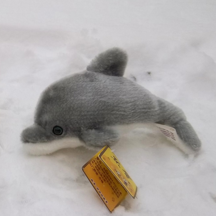 Marine animal little gray dolphin plush toy soft toy 21cm birthday gift b4836<br><br>Aliexpress